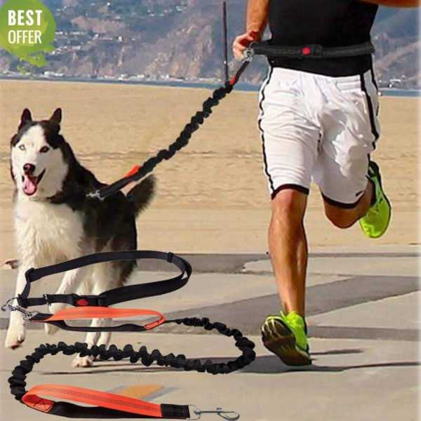 The Best Dogs Leash Adjustable Waist Rope On Sale 1